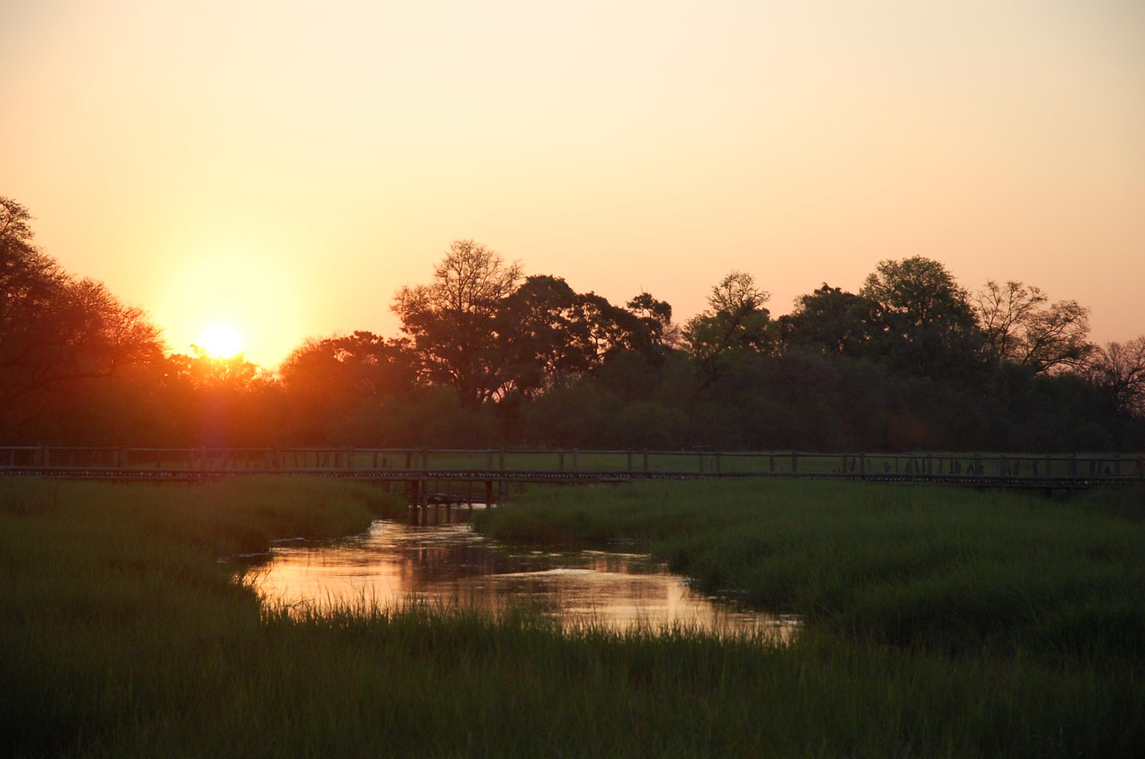 Okawango Delta
